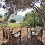 Two rustic chairs placed under an old olive tree, with a view across the garden to the pool at The Tower House in Kos